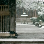 Snow in Tokyo yutenji 2