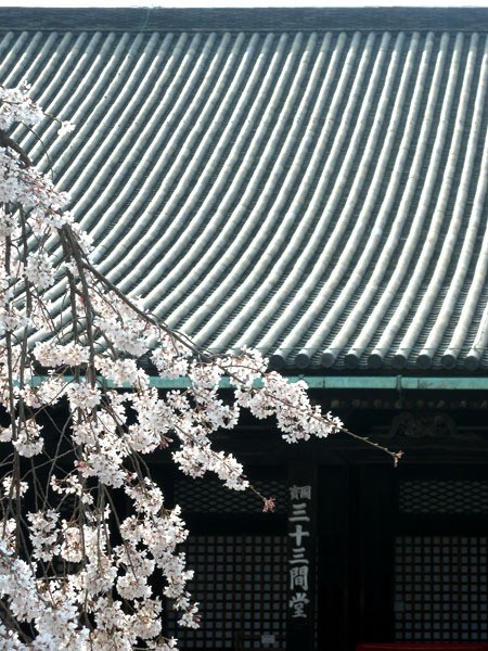 kyoto sanjusangendo gate